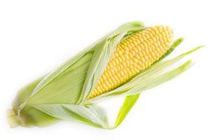 فوائد الذرة الصفراء